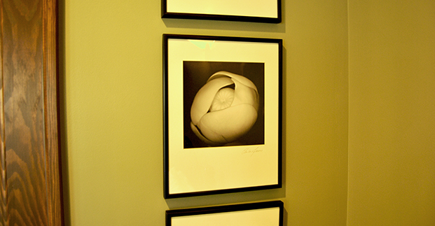 Photographs in Birth Suite 3.